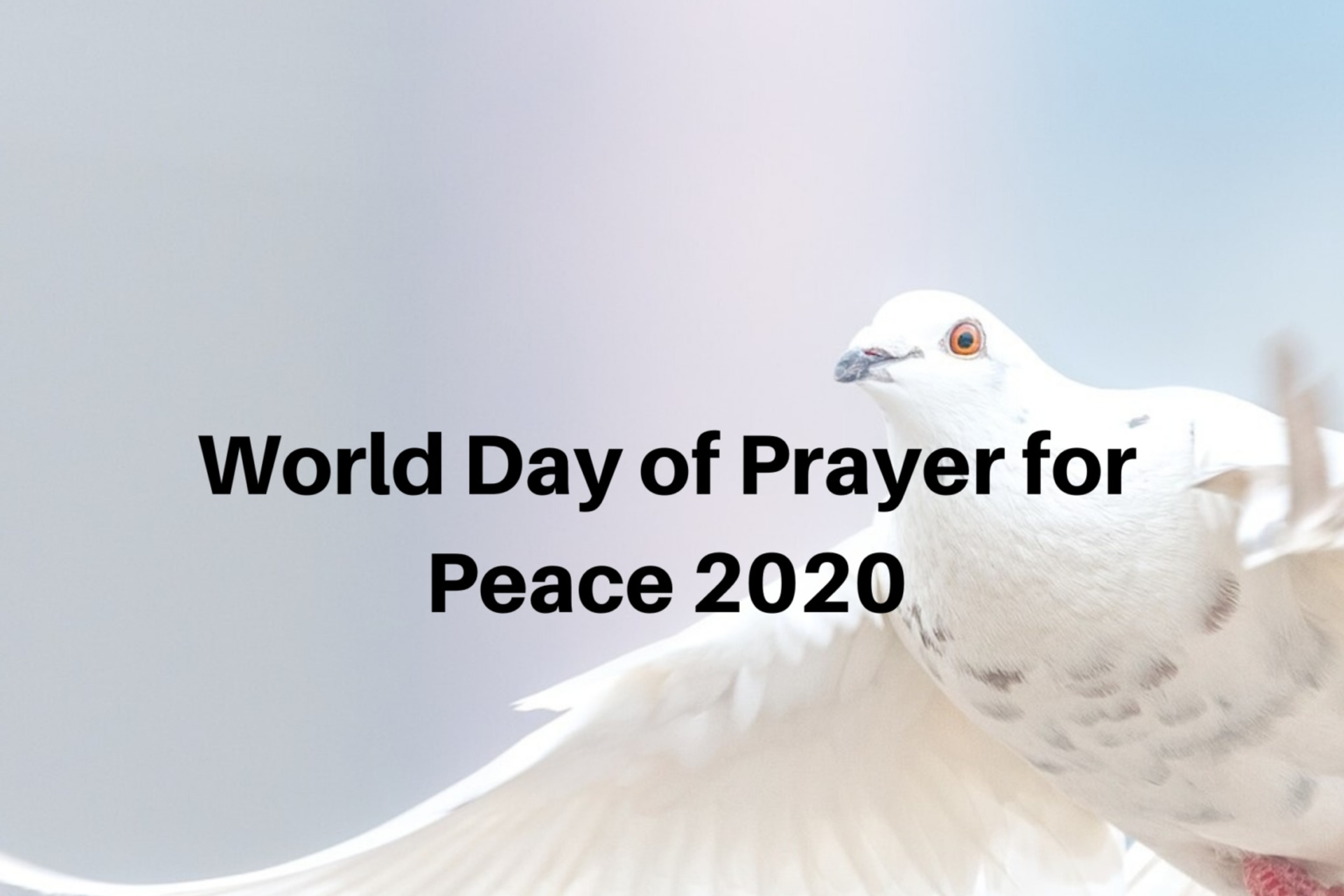 World Day of Prayer for Peace 2020