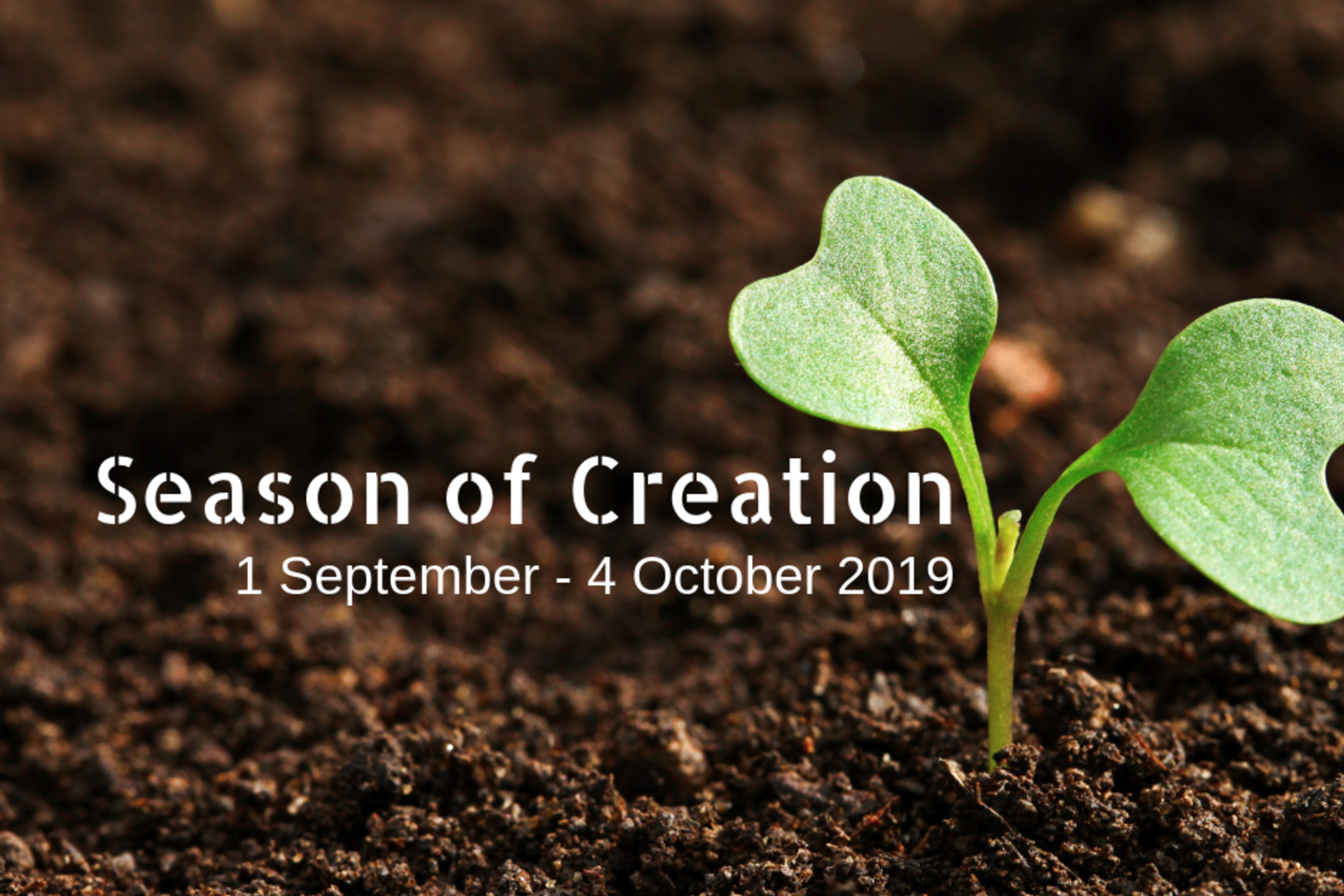 Season of Creation 2019