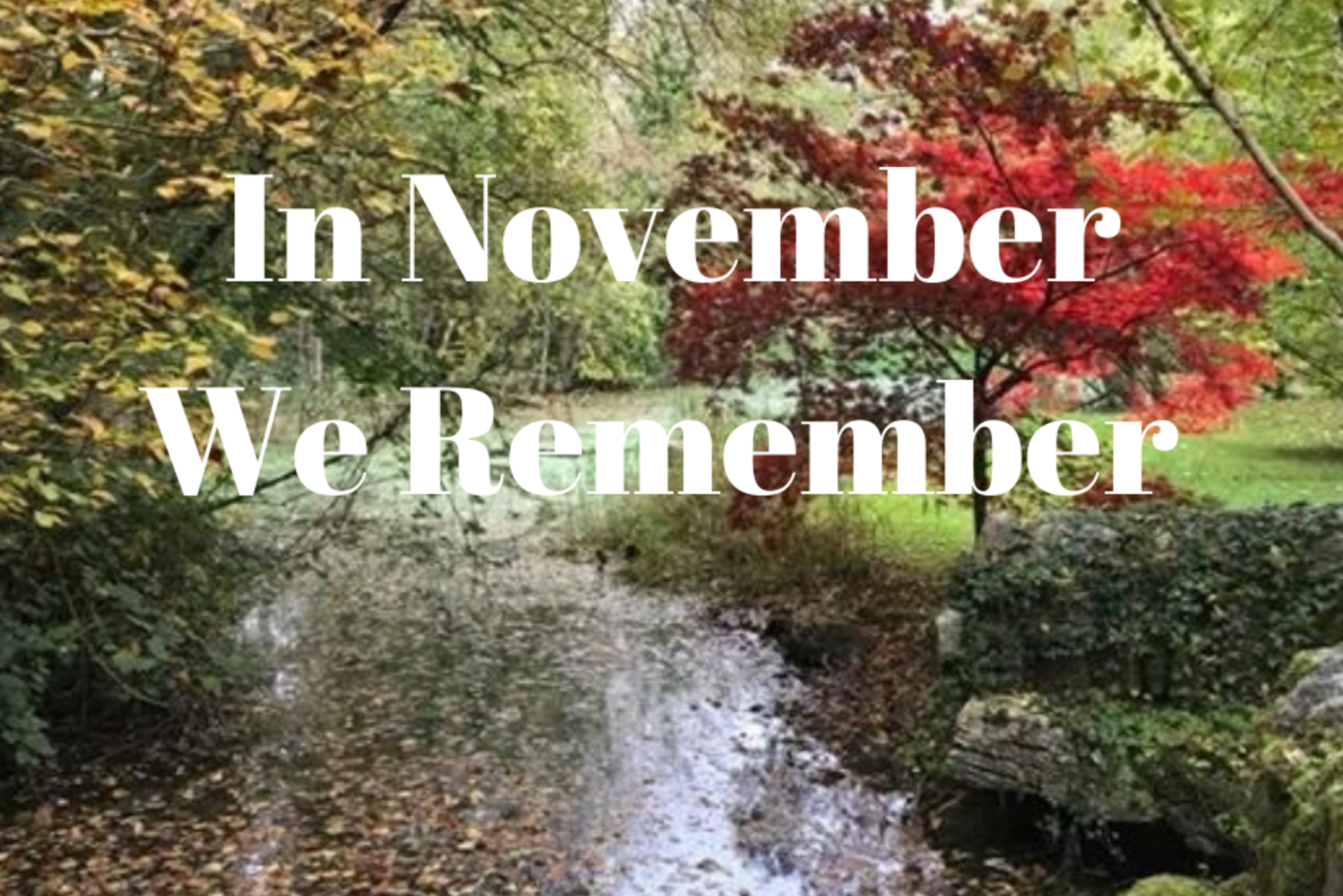 In November We Remember