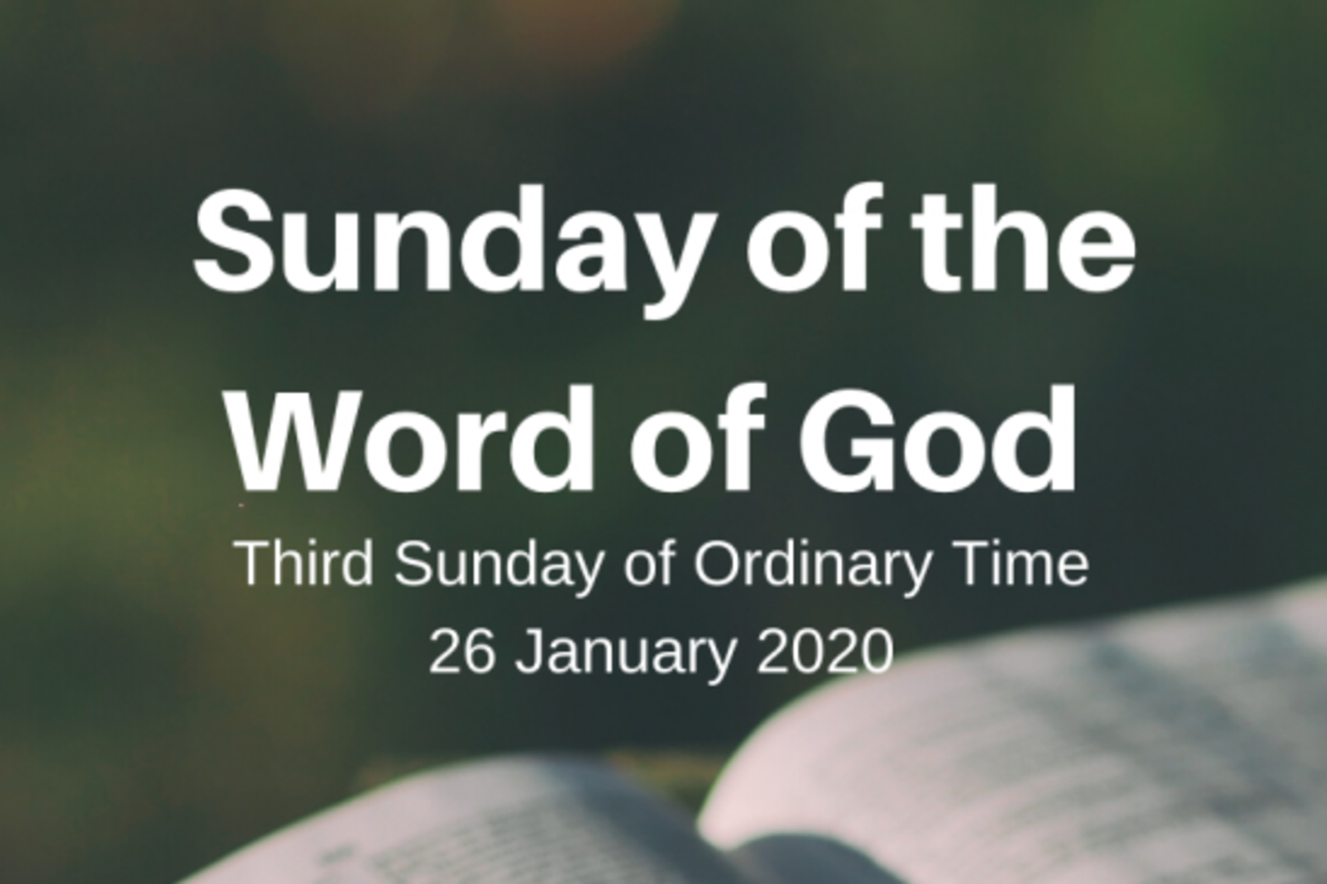 Resources for 'Sunday of the Word of God'