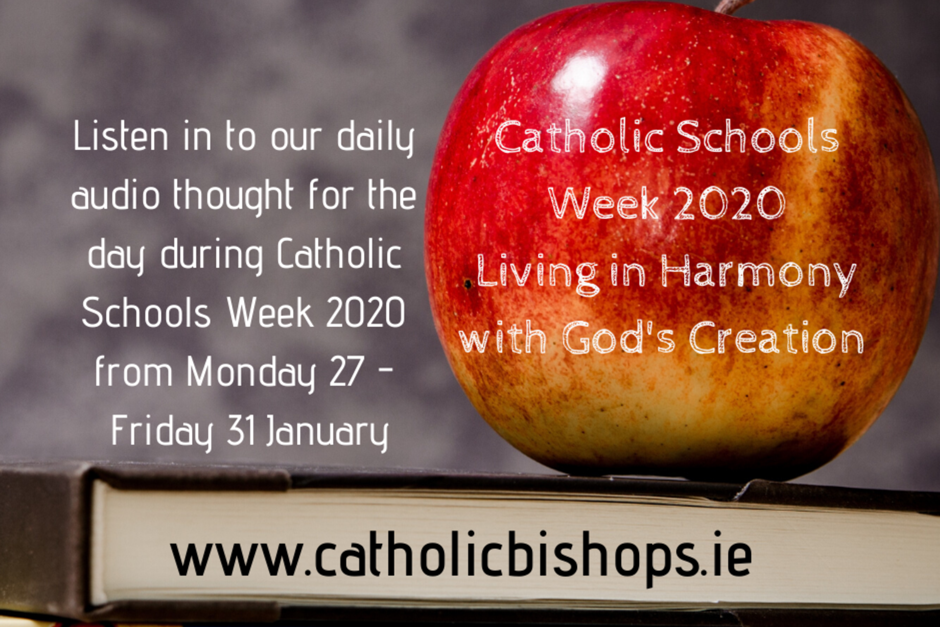 New audio and Resources for Wednesday of Catholic Schools Week 2020
